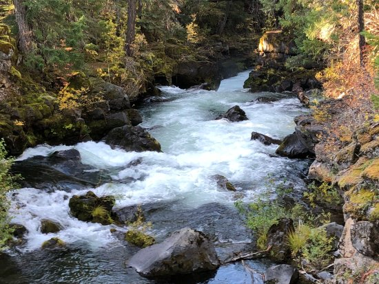 Rogue River: photo1.jpg