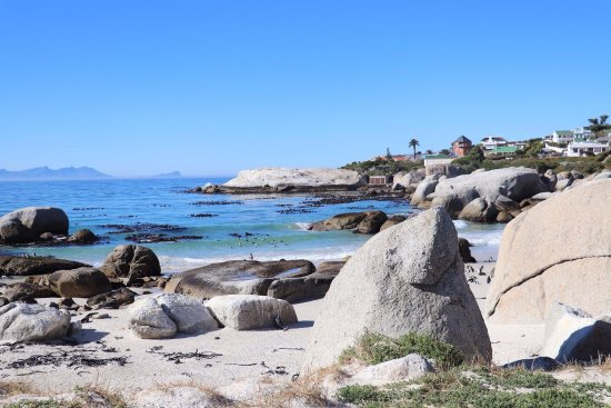 Cape Town Day Tours: photo3.jpg