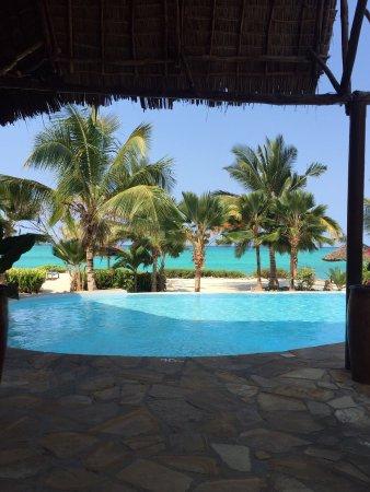 The Zanzibari: photo1.jpg