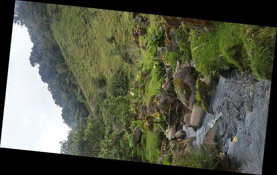 Bajos del Toro, Costa Rica: 20171017_112334_Richtone(HDR)_large.jpg