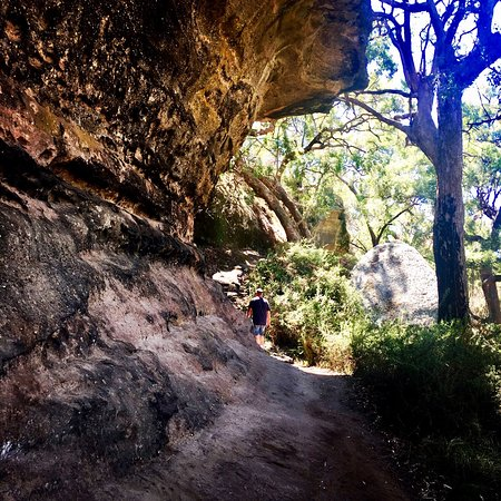 Mudgee, Australia: Beautiful easy walk