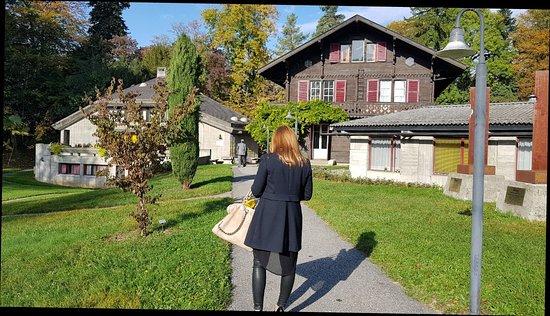Le Grand Saconnex, Zwitserland: 20171019_104234_large.jpg
