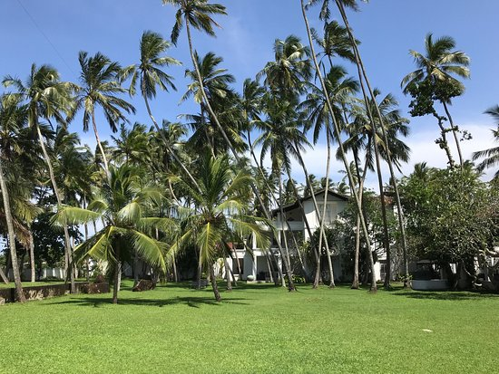 Paradise Road The Villa Bentota: photo2.jpg
