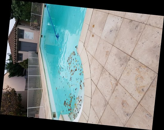 Montfavet, Γαλλία: Best Western Hôtel Paradou