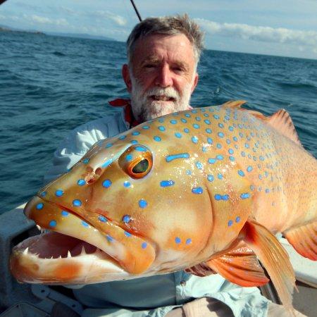 Cooktown, Australie : coral trout