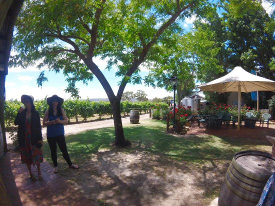 Swan Valley, Australia: The first winery stop.