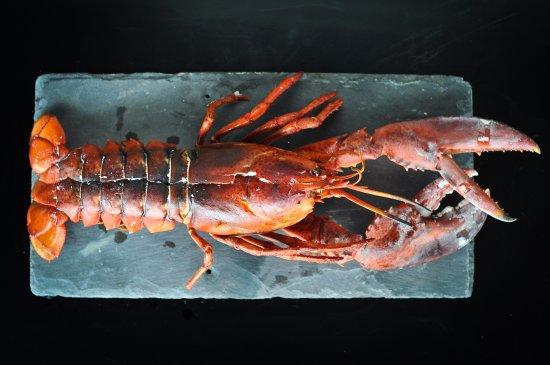 Fresh native lobster at FISK Prestbury