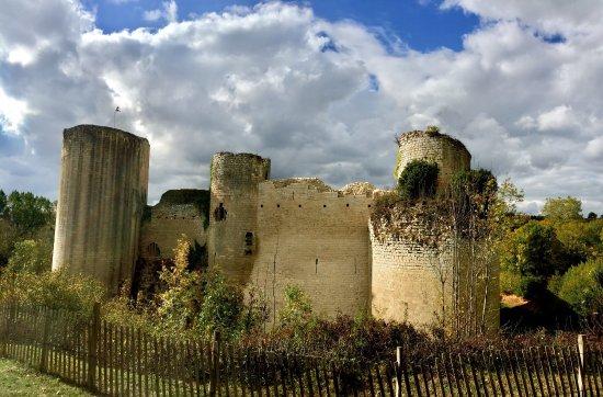 Chateau de Coudray-Salbart