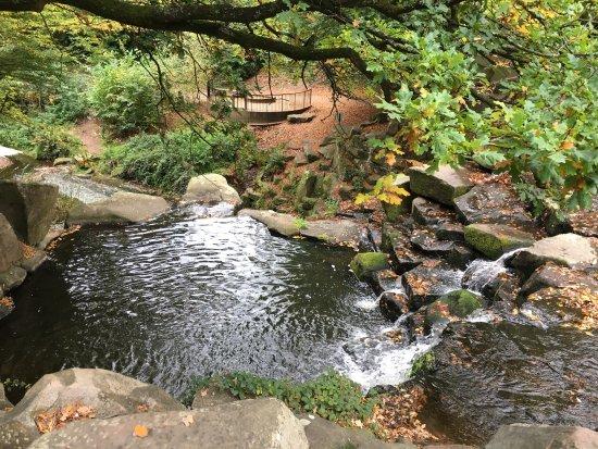 Virginia Water, UK: photo2.jpg