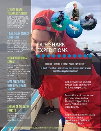 ‪‪Shark Expeditions Africa‬: About our Shark Expeditions‬