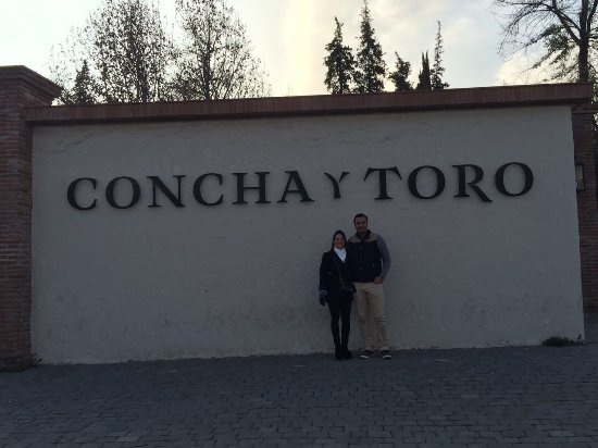 Concha y Toro: photo2.jpg