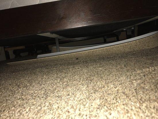 Sand Hollow Resort: broken blinds under the bed