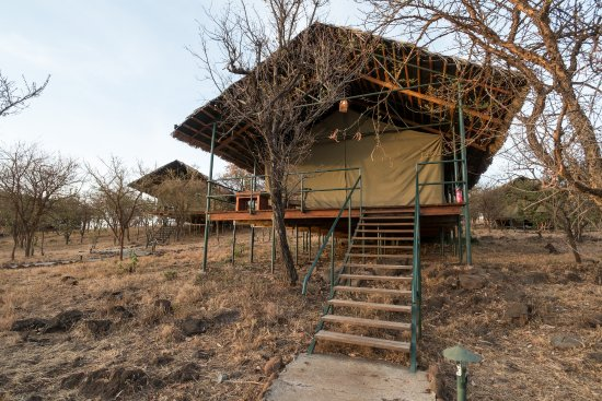 Ngorongoro Wildcamp: Tented Camp