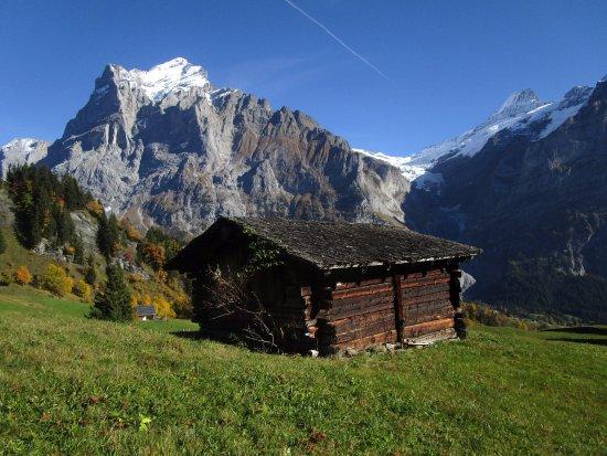 Das Wetterhorn, aufgenommen an der Trottinett-Strecke vom Bort nach Grindelwald hinunter