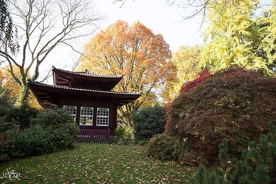 Leverkusen, Alemania: Teehaus
