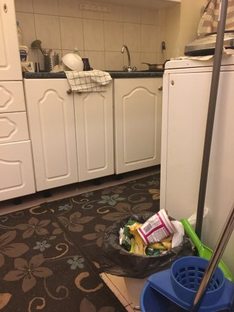 Disgusting dirty kitchen. - Picture of Historic Apartment and Rooms ...