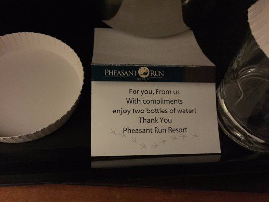 Pheasant Run Resort: Free water. I love that little touch