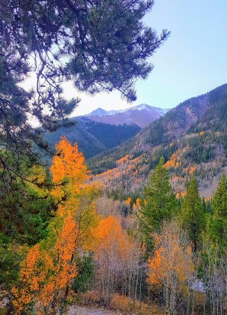 Twin Lakes, CO: The view from the front porch of Cinnamon Bear