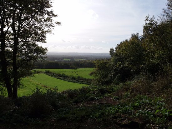 One Of Several Great Views From Toys Hill Picture Of Fox Hounds