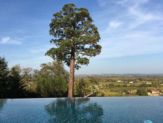 Moulon, France: Sicht vom Liegestuhl am Pool auf St. Emilion