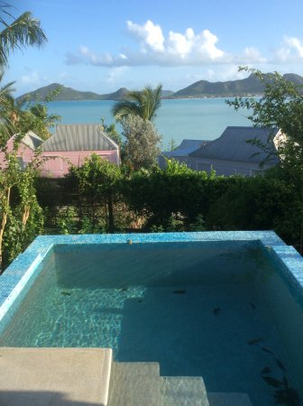 Cocobay Resort: This was our plunge pool - surrounded by vegetation with nowhere to sit alongside