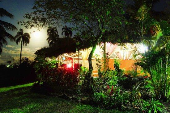 Los Brazos, Dominikana: This is the view of our dining are in a full moon night.