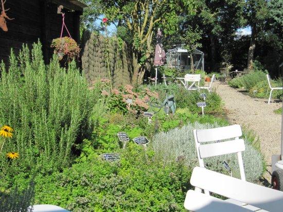 Jabbeke, Belgien: Delightful herb garden