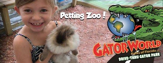 Wildwood, FL: Petting Zoo Fun at GatorWorld Parks of FL