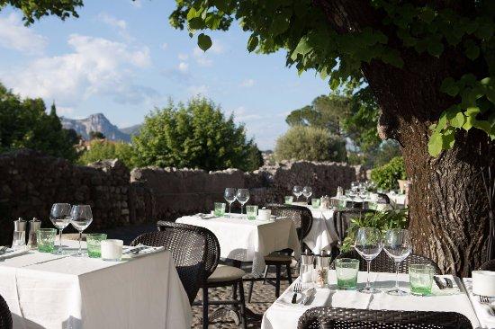 Le Tilleul St Paul De Vence Restaurant Reviews Photos