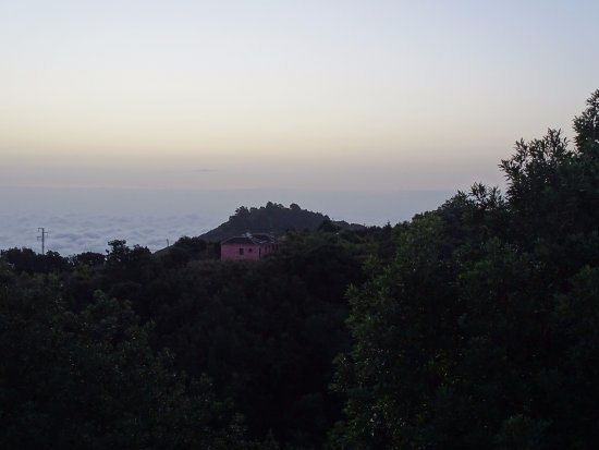 Foto de Hotel La Palma Romantica