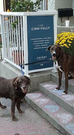 Deep Cove, Kanada: Pups