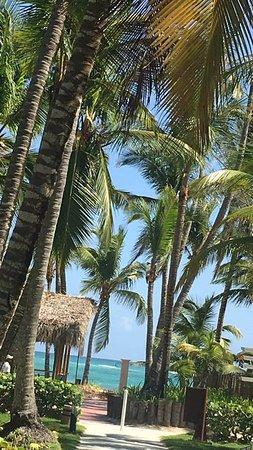 Grand Palladium Punta Cana Resort & Spa: Vista do Hotel Palace