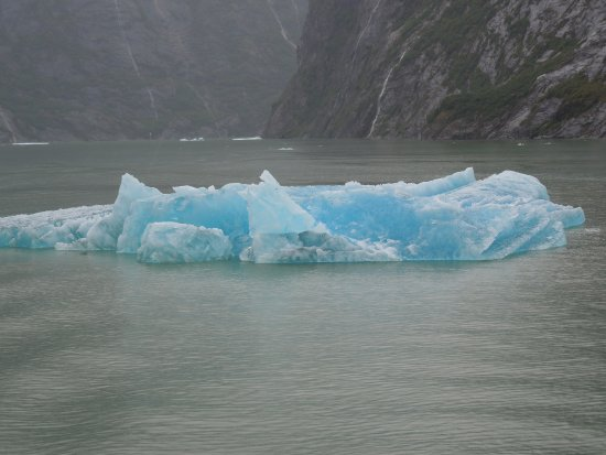 Tracy Arm Fjord: blue ice floe