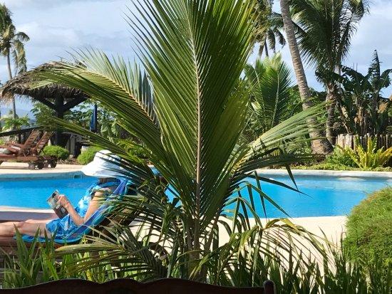 Paradise Taveuni: photo3.jpg