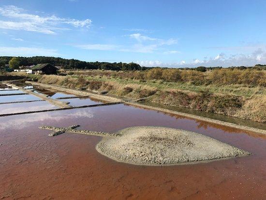 Les Sables d'Olonne, France : En cheminant dans le parc d'aventures du sel.