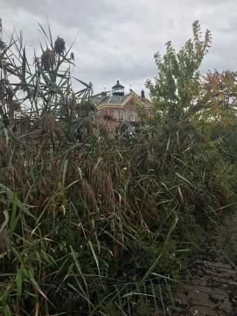 Saugerties Lighthouse: Lighthouse