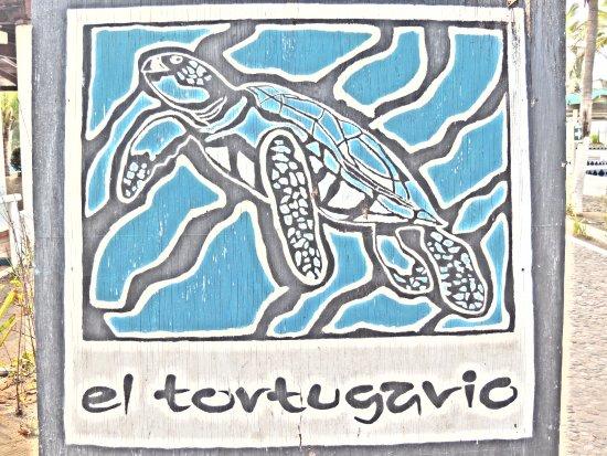 Armeria, เม็กซิโก: el CENTRO ECOLÓGICO EL TORTUGARIO, santuario de la tortuga marina y respirar tranquilidad en un