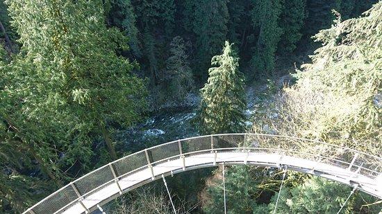 North Vancouver, Canada: Cliffwalk