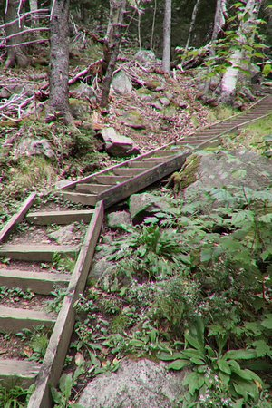 Cape North, Canada: Lots of wooden stairs