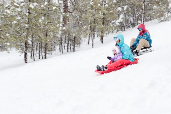 Big Bear Lake Sledding