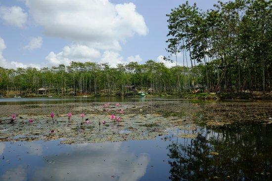 Cilacap, Indonesia: reflexy