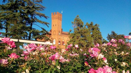 Quattordio, Italië: castello