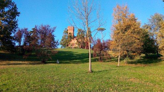 Quattordio, Italië: giardino