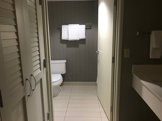 Courtyard Detroit Pontiac/Auburn Hills: The bathroom