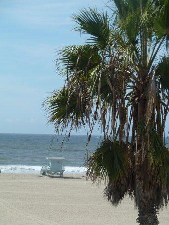 Shutters on the Beach Photo