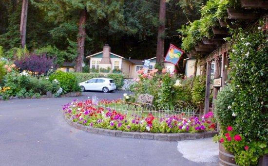 Fern Grove Cottages: photo0.jpg