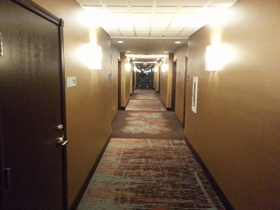 Holiday Inn Express & Suites Butte Photo