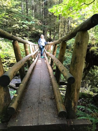 Salmon River Trail: Nice bridge crossing