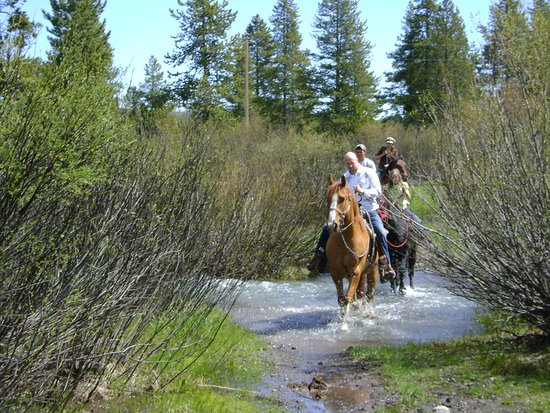 Island Park, ID: Riding through Ice House Creek