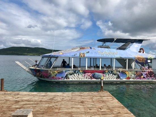 Port Havannah, Vanuatu: Turtle Reef at Wahoo Bar Havannah Harbour Vanuatu